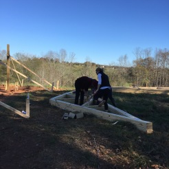 Fabulous friends helping to nail trusses together.